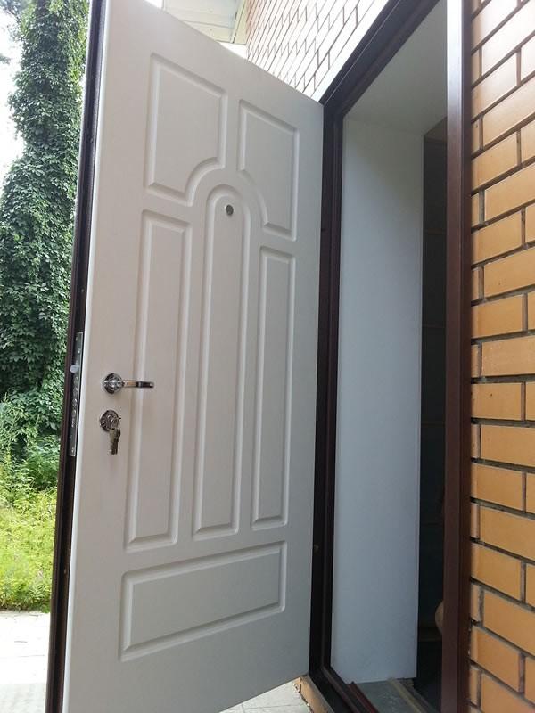какие металлические двери в частный дом лучше критерии выбора